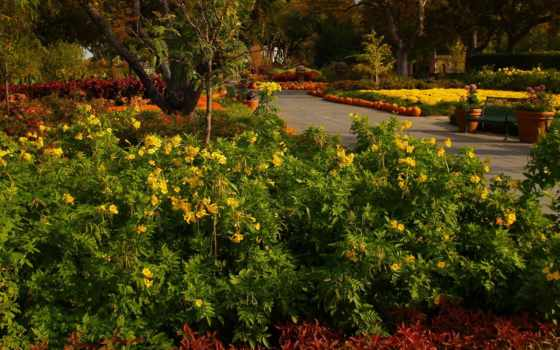 сады, картинка, природа, agar, hath, так, изображение, jate, aashama, трава, video,