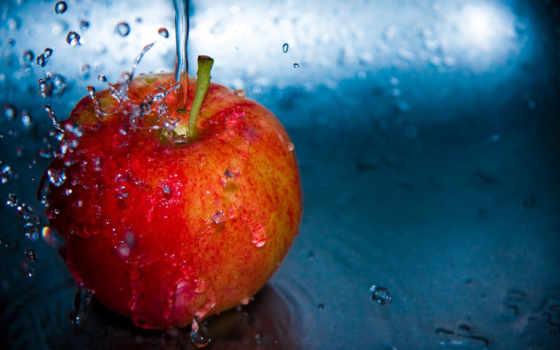 плод, apple, лет, stuffpoint, ago, картинка, desktop,