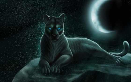 panther, black, черная, пантеры, fone, keyword, большие, best,