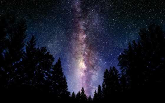 космос, наклейка, cosmos, стена, ночь, дерево, pinterest, путь, свет, млечный, cheap,