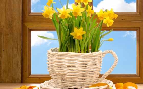 spring, window