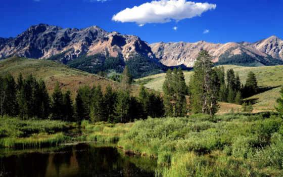 landscape, гора, горы, trees, всех, чая, река, лес, леса, гор,