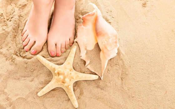 пляж, legs, summer, shells, песок, ракушки, ноги, logo,