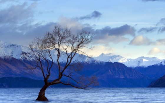 озеро, дерево Фон № 24909 разрешение 1920x1080
