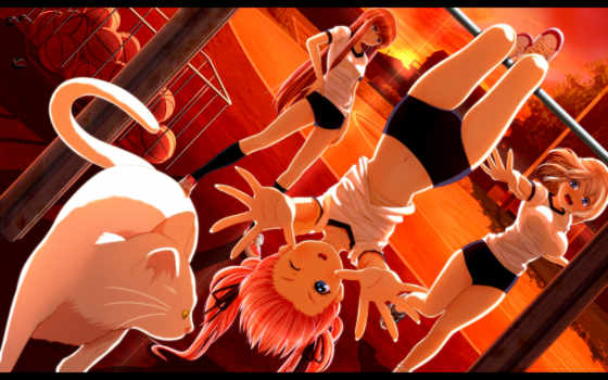 anime, янв, world