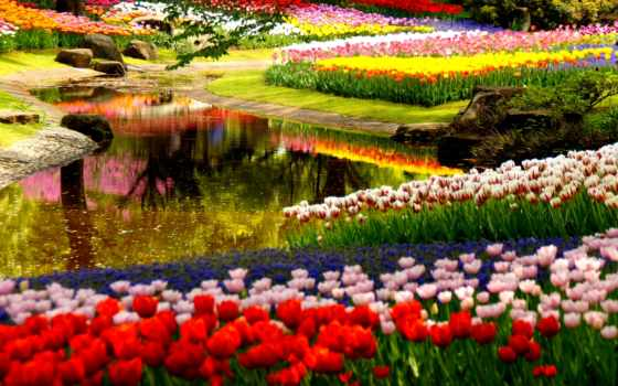 para, марта, primavera
