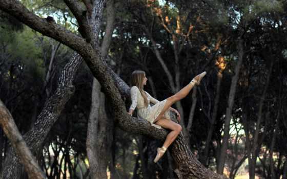 лесу, фотосессия,