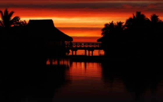 tropical, муреа, tahiti, закат, таити, пальмы, пляж, любим,