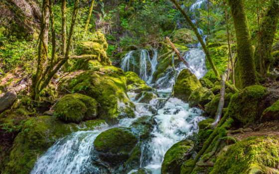 поток, скалы, деревья