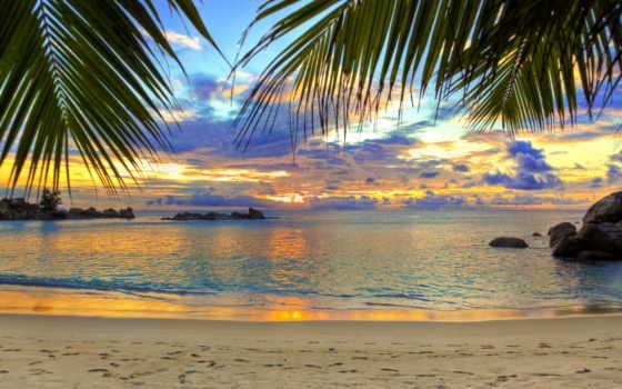 фотообои, пляж, фотообоев, море, стену, каталог, uwalls, пальмы, моря, magazine, заказать,