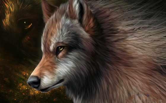 волк, волки, zhivotnye, телефон, картинка, картинку, графика, волка, снегу, картинок, хищник,