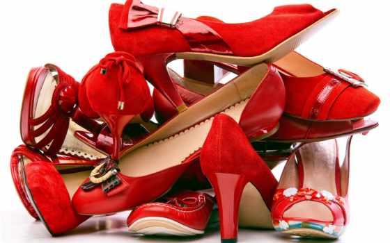 туфли, обуви, women