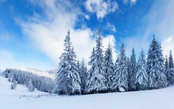природа, снег, winter, лес, елки, oblaka, горы,