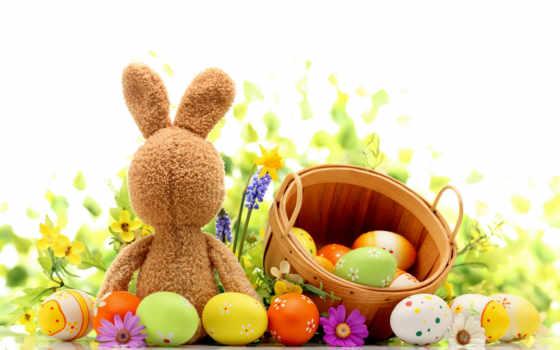 заставки, кролик, яйца, красивые, easter, bunny, только, заяц, daily,