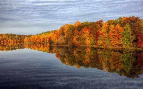 осень, природа, trees, краски, отражения, лес, water, небо,