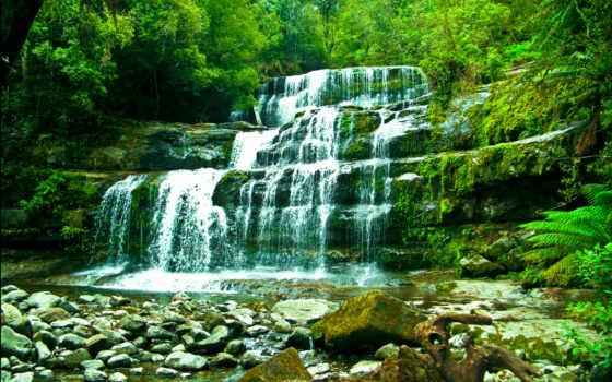 лес, водопад, камни, природа, images, эр,