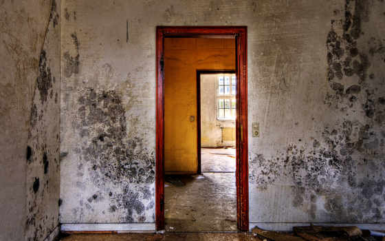 abandoned, urban, decay, стена, lightroom, фотообои, adobe, торрент, walls, houses,