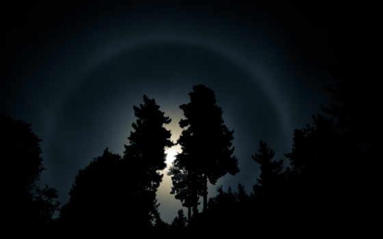 halo, iris, деревья, arco, moon, desktop, sun, ночь, небо, para, oscuridad, dark, дерево, minus, пейзажи, лучи, свет,