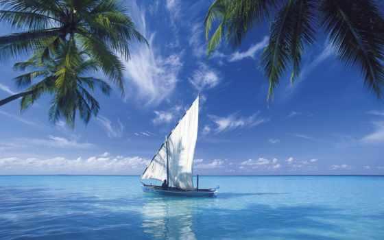 sailing, ocean