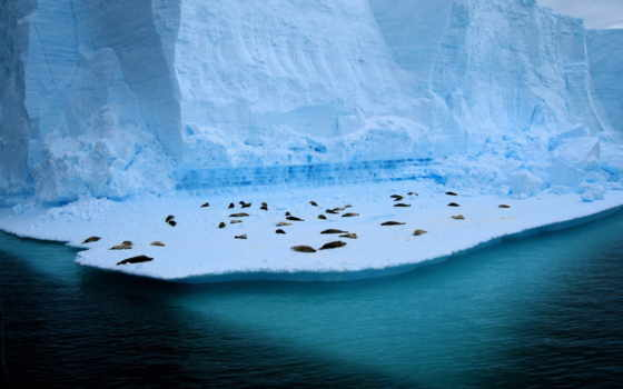 гора, mountains, galaxy, landscape, para, samsung, лед, free,