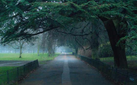 пейзажи -, trees, аллея, дорога, park, небо, краски, река, трава, горы, landscape,