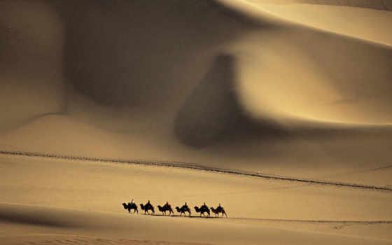 фотография, девушек, красивых, подборка, ut, верблюд, чтобы, ssb, gw, разрешениях, других,