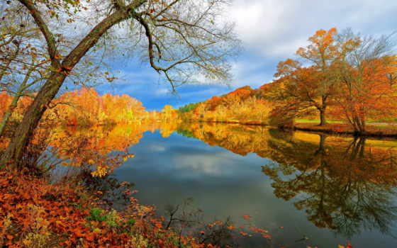 осень, природа, озеро, landscape, отражение, лес, красивые,