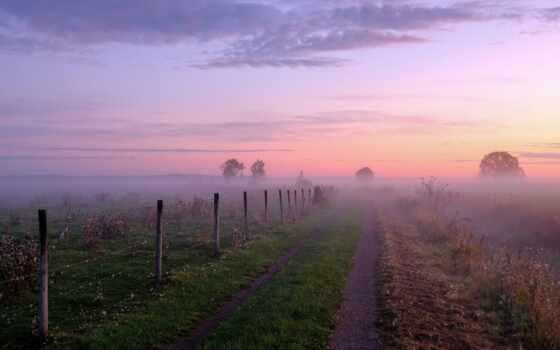 рассвет, туман, trees, дорога, небо