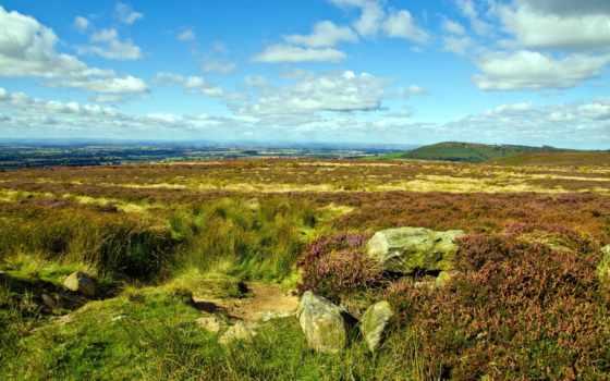 природа, summer, поле, весенней, природы, landscape, мар, красивые, заставки,
