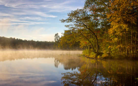 озеро, утро, лес, туман, mist, со,