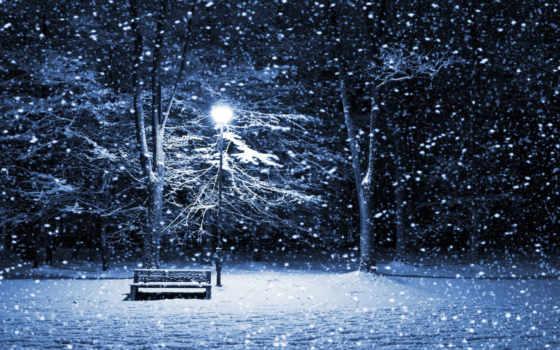 zima, снег, деревя