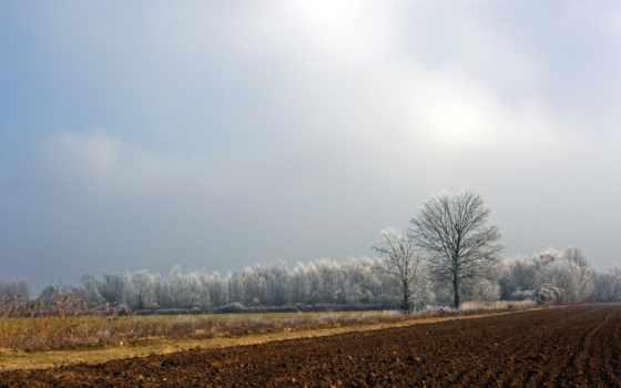 пашня, ukrainian, trees, landscape, поле, russian, пейзажи -, kenbutsu,