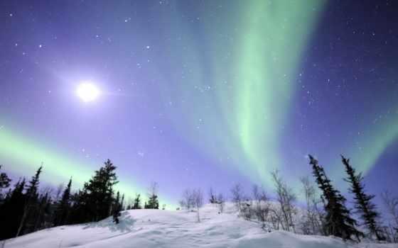 северное, сияние, природа, пейзажи -, северного, снег, интернет, сияния, полярное, trees, главная,