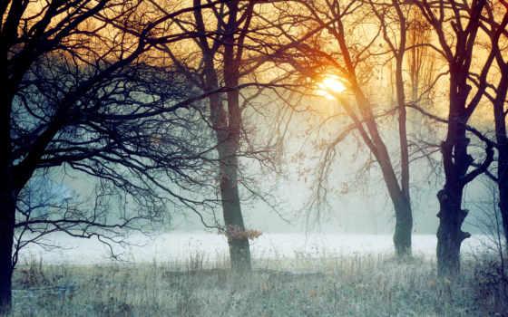 туман, sun, море, рассвет, утро, радость, закат, осень,