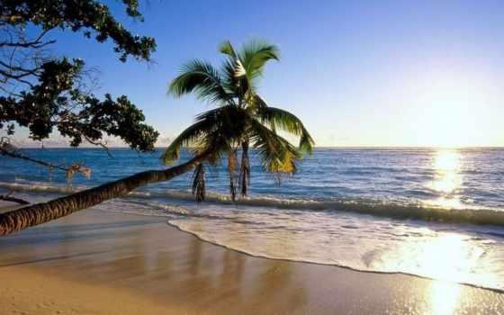 место, goa, райское, отдыха, tourist, портал, за, серий, путешественника, земле, гранью,