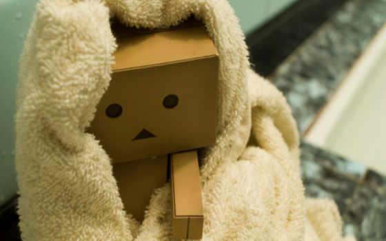 danbo, картон, полотенце, коробка, голова, роботы, коробочки, эти, картинка,