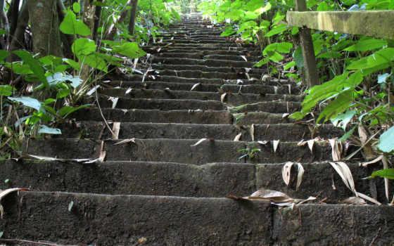 природа, лестница, desktop, stairways, god, free,