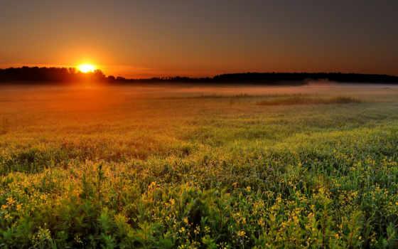 поле, sunrise