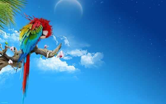 абстракция, branch, blue, попугай, top, rambler,