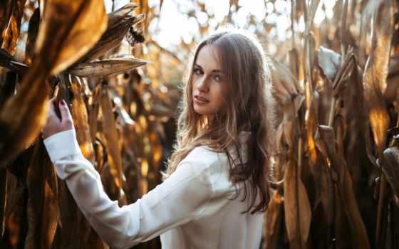 девушка, corn, волосы, devushki, взгляд, лицо, portrait,