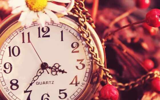 hour, красивый, магазин, time, циферблат, женский, shooter, цепь, интернет, работать, reloje