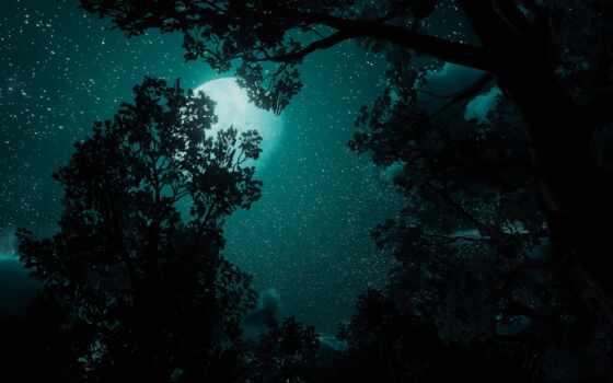 darkness, ночь, tretogor, wild, hunt, game, музыка, gate