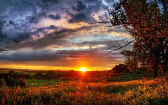 zakat, priroda, небо, солнце, деревя, pole,