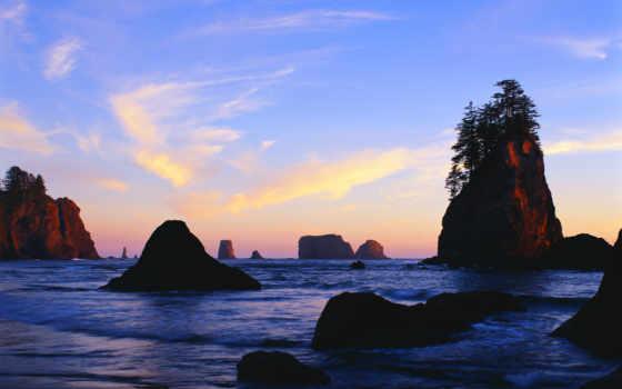 море, landscape, монитора, пальмы, пуш, просмотров, дата, кб, пляж, рейтинг,