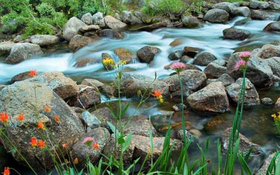 река, горная, природа, туман, горы, gompix, trees,