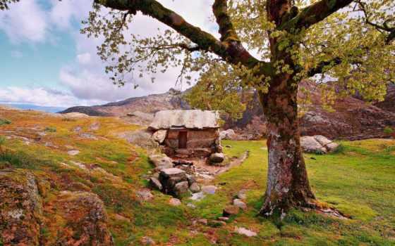 домики, фона, лесные, оформления, дерево, slaytyerim, landscape, lodge, горы, slayt, slaytları,