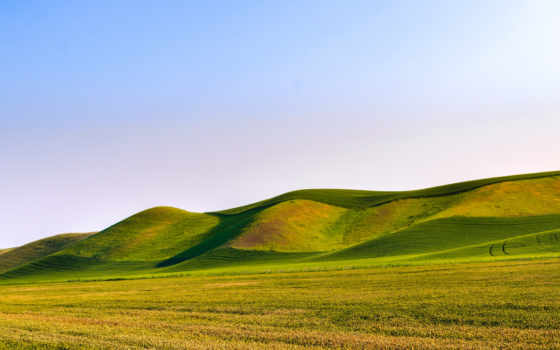 scenery, sunny, blue, природа, небо, поле, морозный, трава,