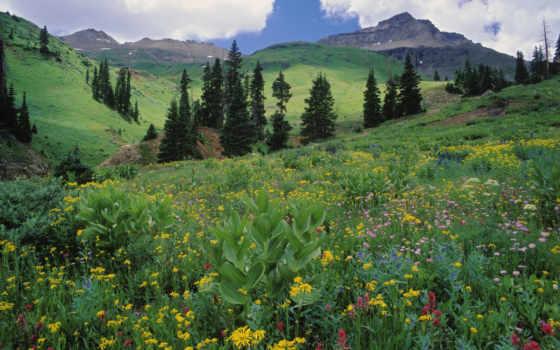 красивые, самые, места, карпаты, часть, красиво, природы, reikartz, место, карпат, even,