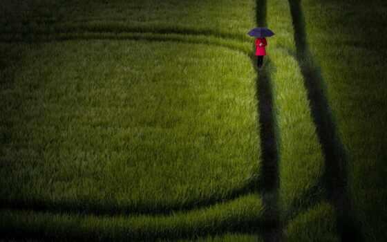 газон, зонтик, поле, девушка, soccer, мяч, rye, robot