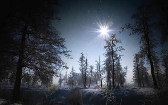 priroda, zima, снег, деревя, пейзаж,
